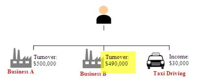 Example 1: Sole-Proprietorship Business A tunrnover is $500,000 Business B turnover is $490,000 Income derived from taxi driving is $30,000